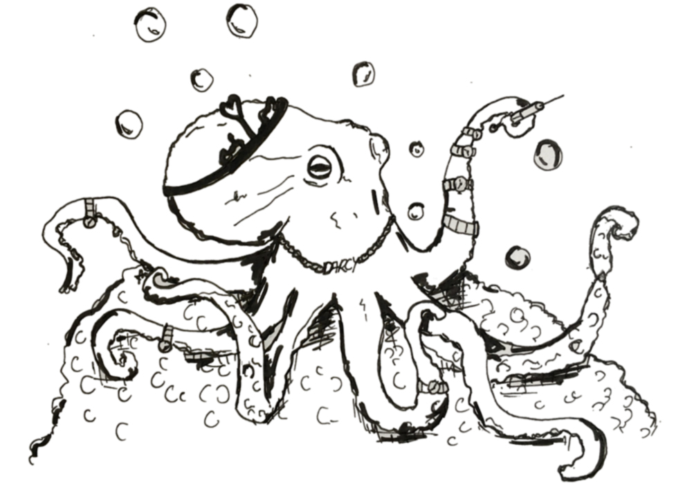 Octopus_Stealing_Expensive_Gifts